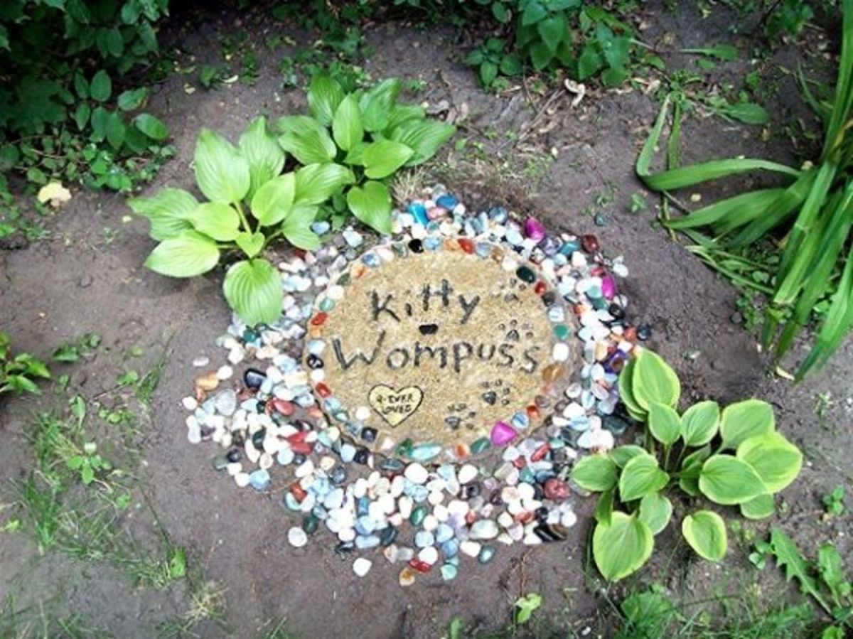 Pet Memorial Garden Ideas Photograph Once Your Stone Is Pl