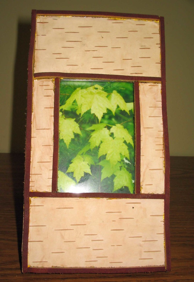 crafting-a-picture-frame-with-birch-branches