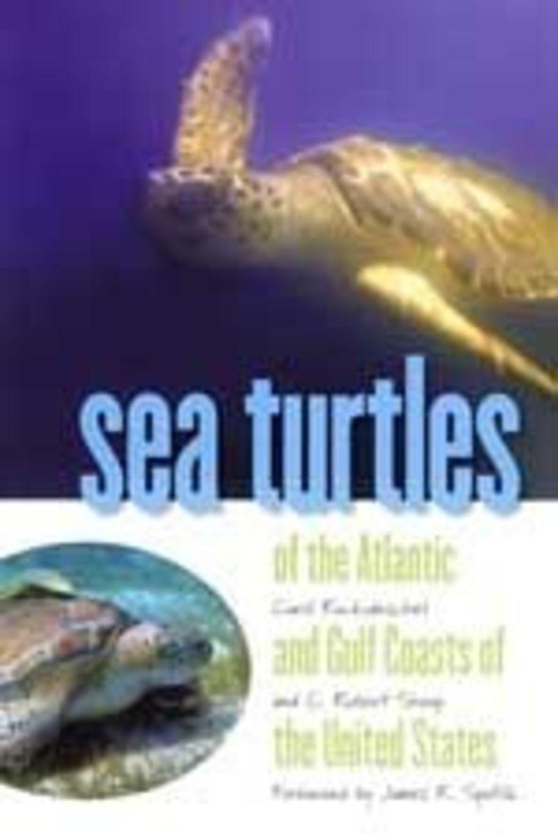 Sea Turtles Book Nature Mall