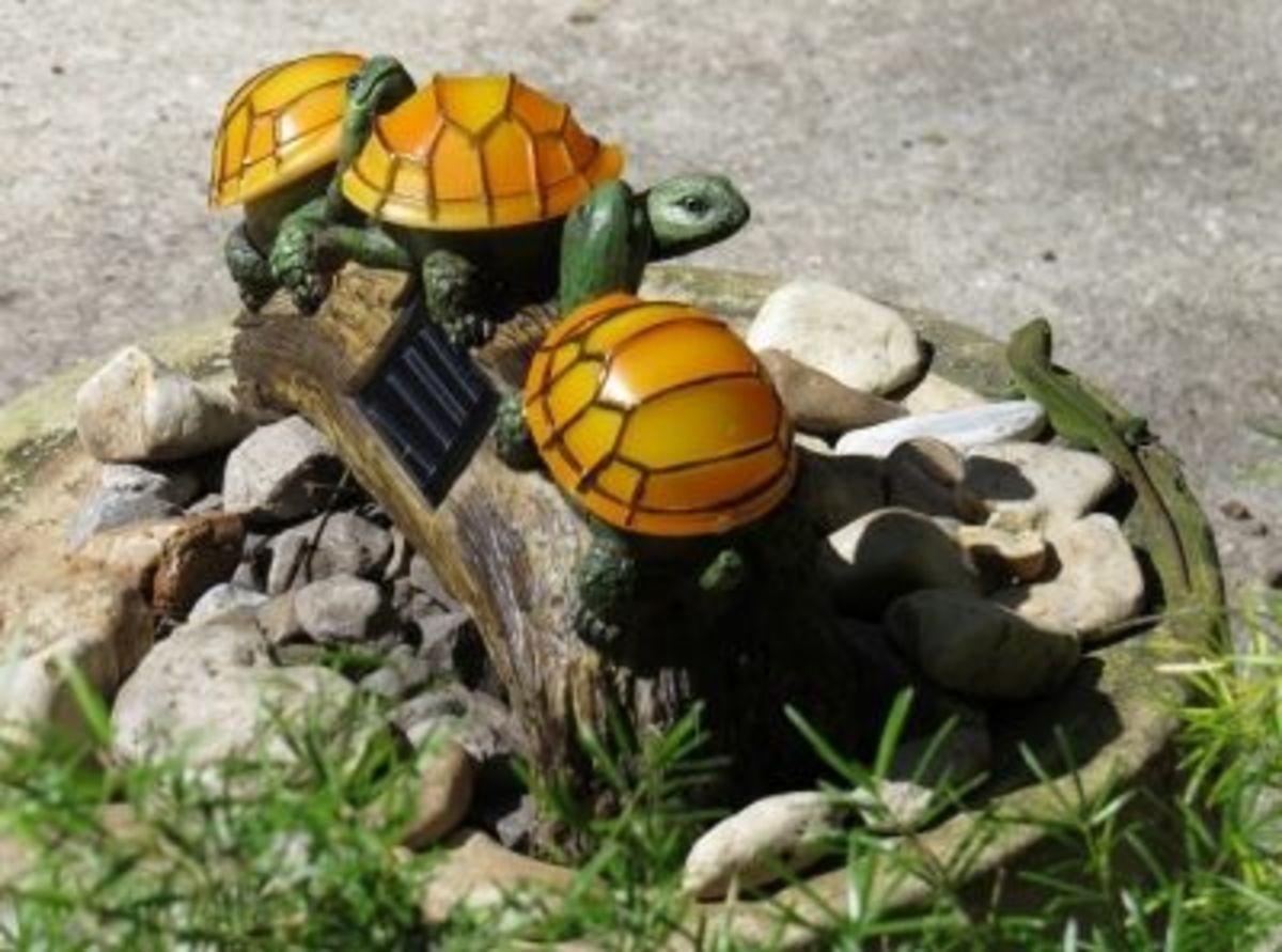 Turtles on Log Solar Light with Lizard Friend Enjoying the Sunny Spot