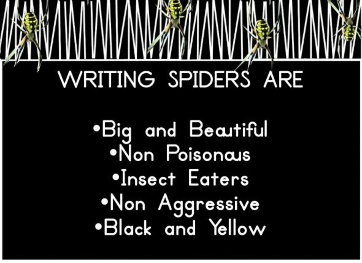 Facts About Writing Spiders