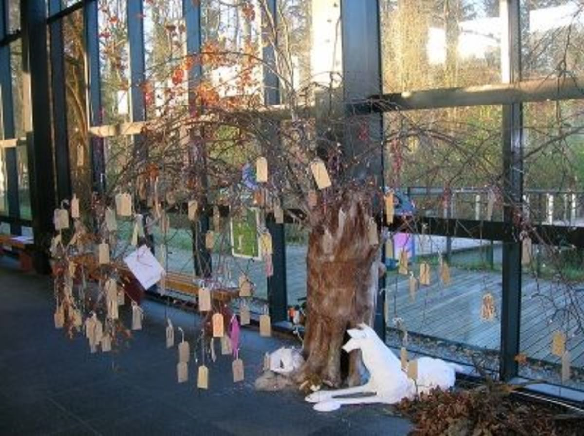 A Wish Tree for the Environment in Scotland