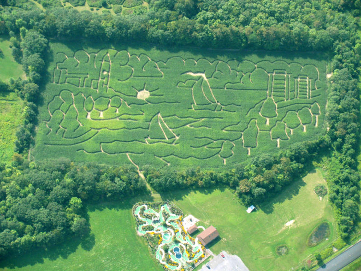 T-Burg Mini Golf Course Corn Maze in NY (C)T-Burg with written permission granted
