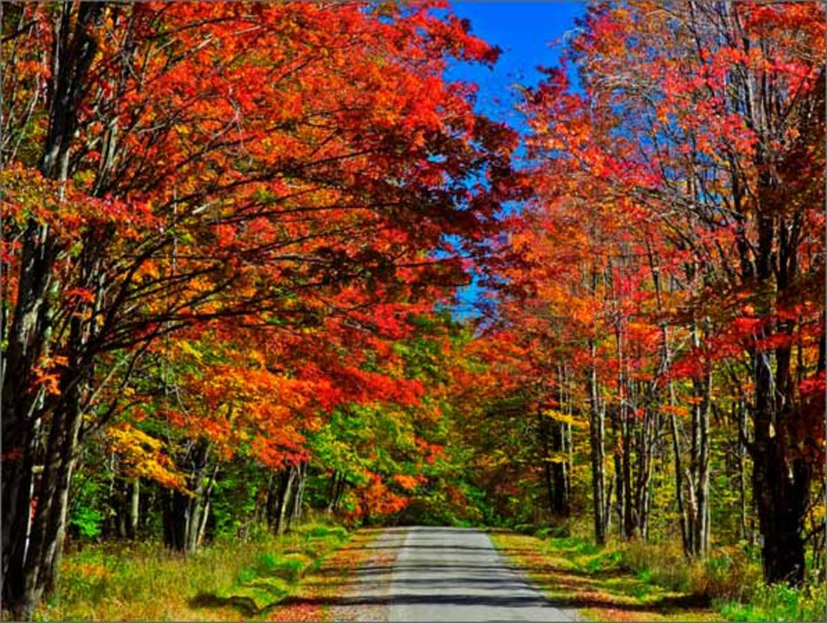 Country Road, West Virginia
