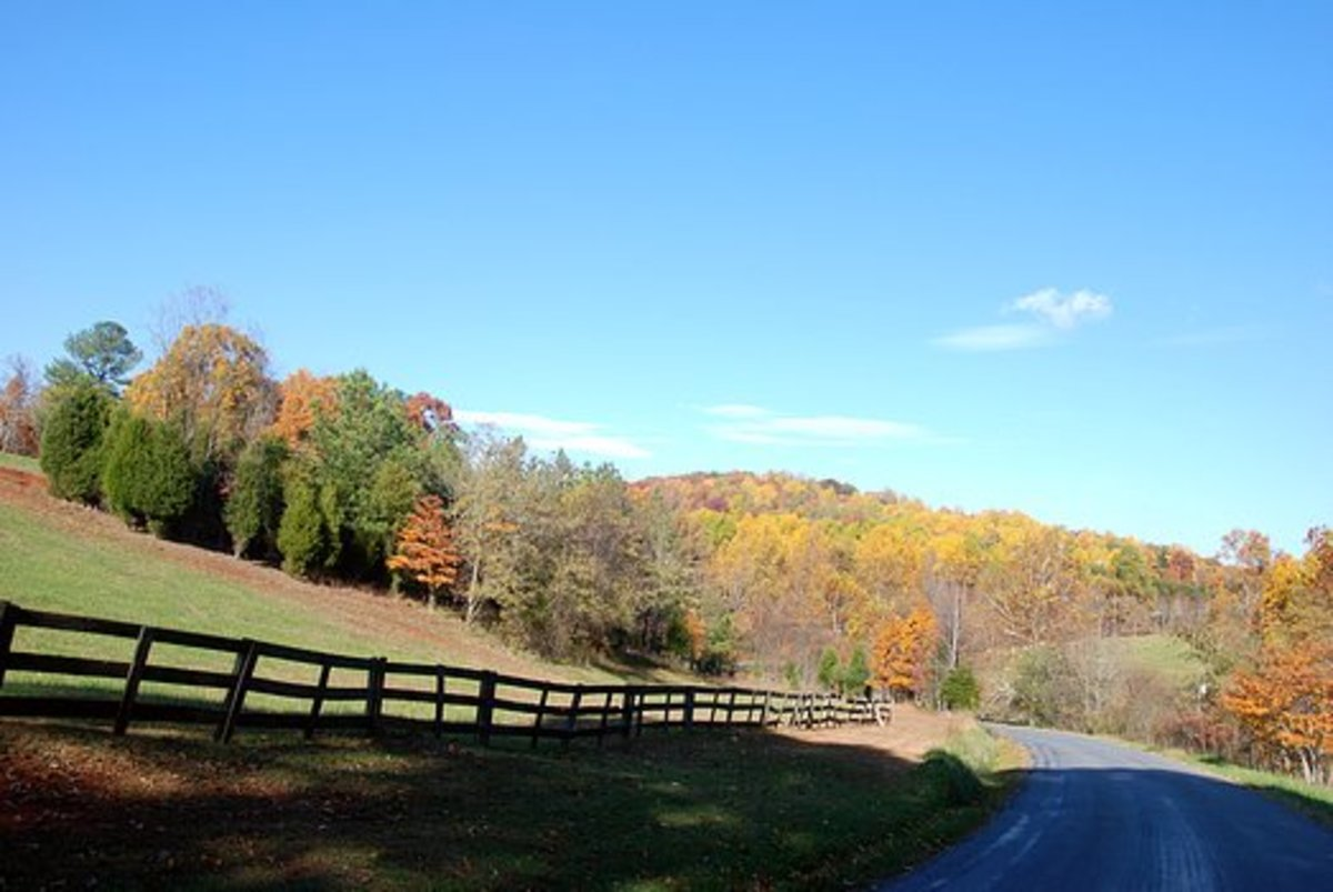A Country Road, Again deeper into the county of Bedford.