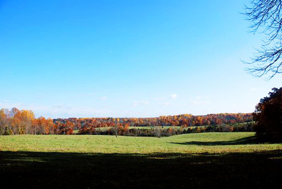 Farm Land and Shadows