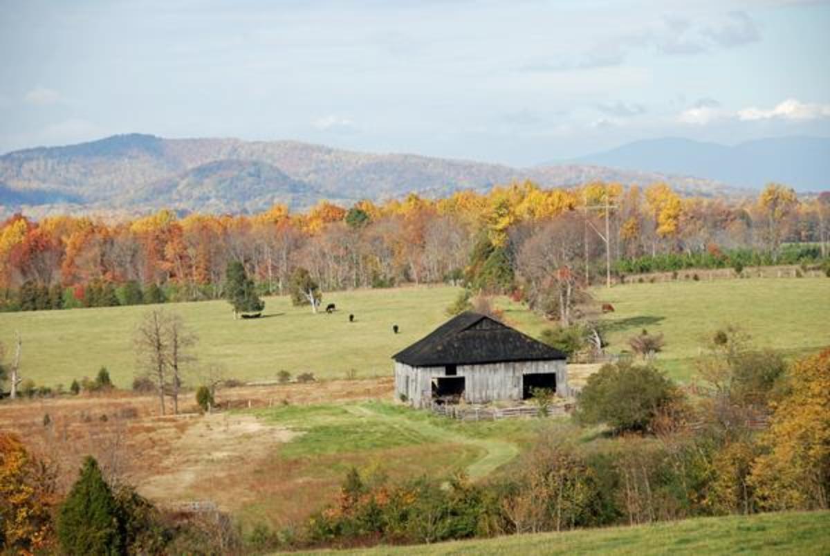 The farm at 811