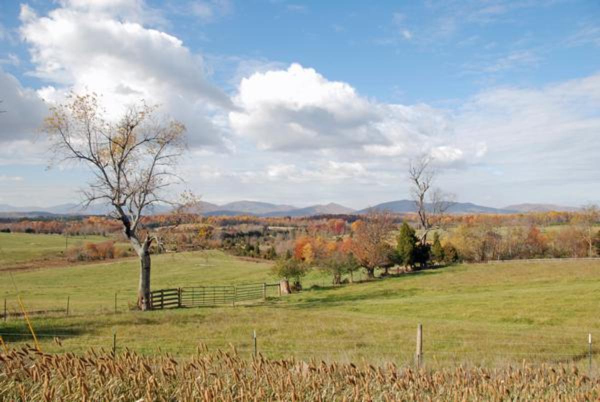 Farm at Rt-811 & Rt-221