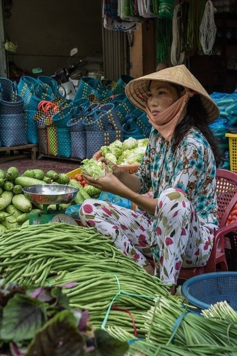 vietnam-is-overlooked-for-its-economic-resilliance