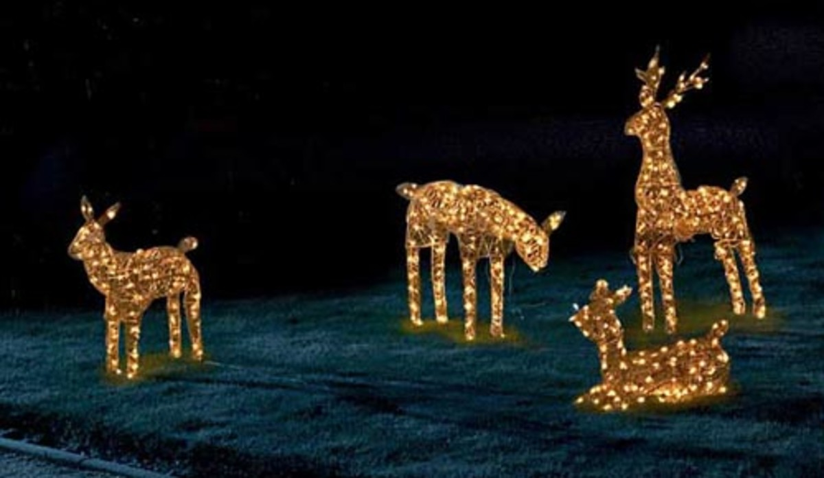 Christmas rope light hubpages for Animated lighted reindeer christmas decoration
