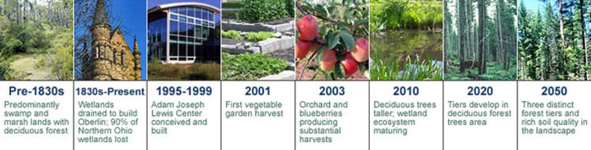 Ecosystem restoration Source: http://www.oberlin.edu/