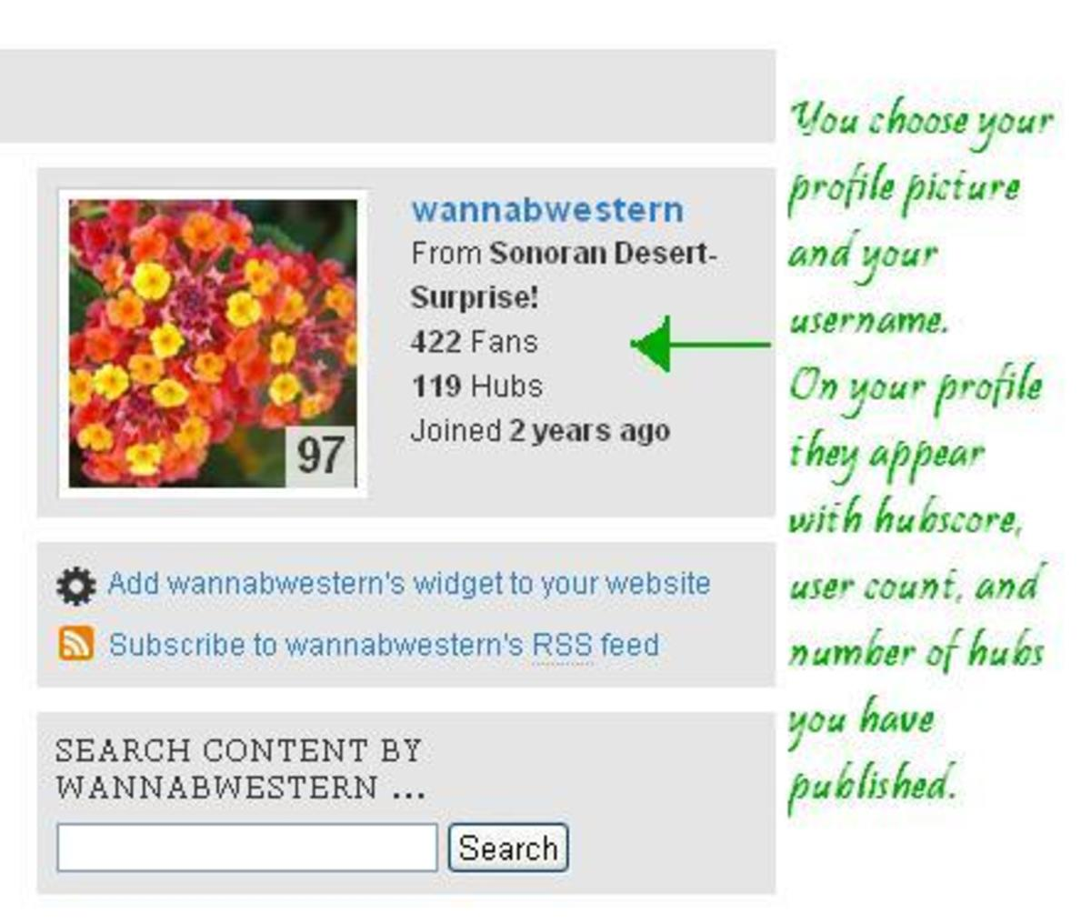 choosing-your-profile-on-hubpages