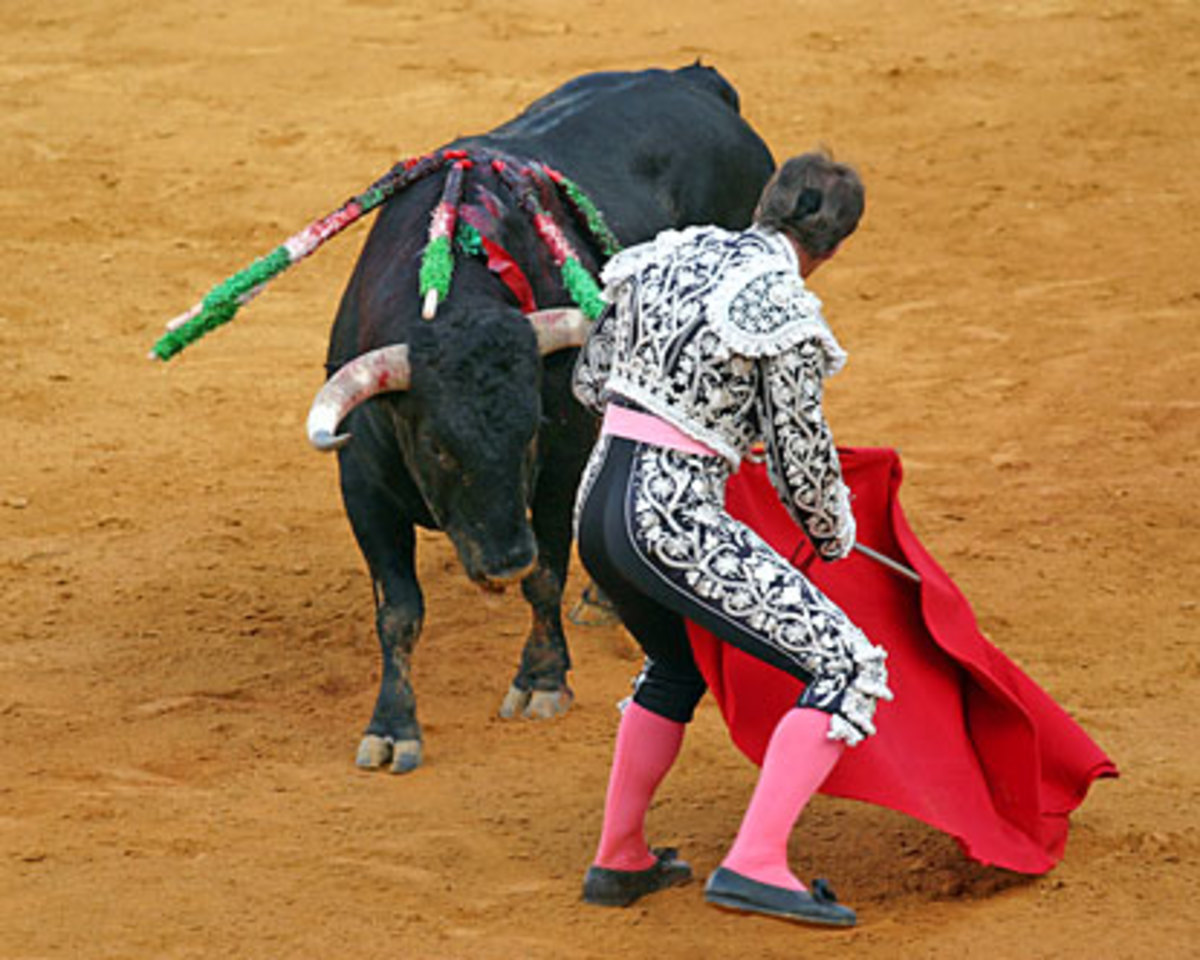 Bull fighting is simply a part of Spanish heritage, it's where young Spaniards realise that death is real and bloody, and the bull doesn't always lose!