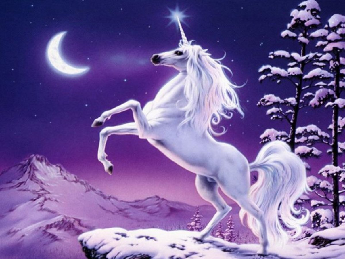 The most common depiction of a Unicorn.     from http://www.cracked.com/funny-1209-unicorn/)