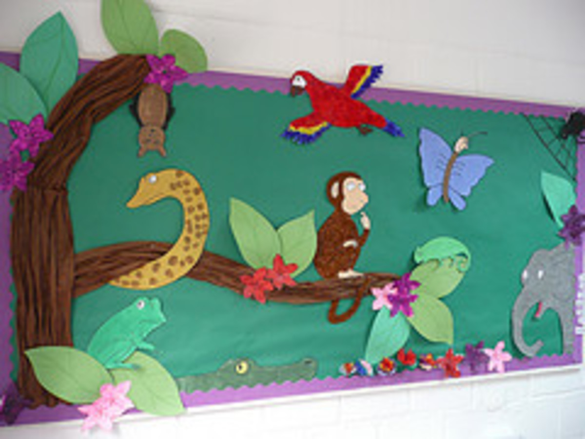 A beautifully designed 'Monkey Puzzle' wall display ...by steve and jemma cobley at flckr
