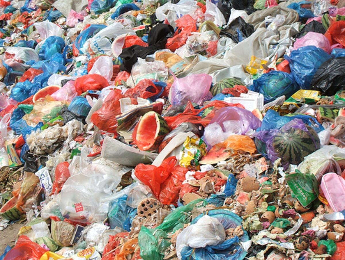 proper disposal of garbage essay