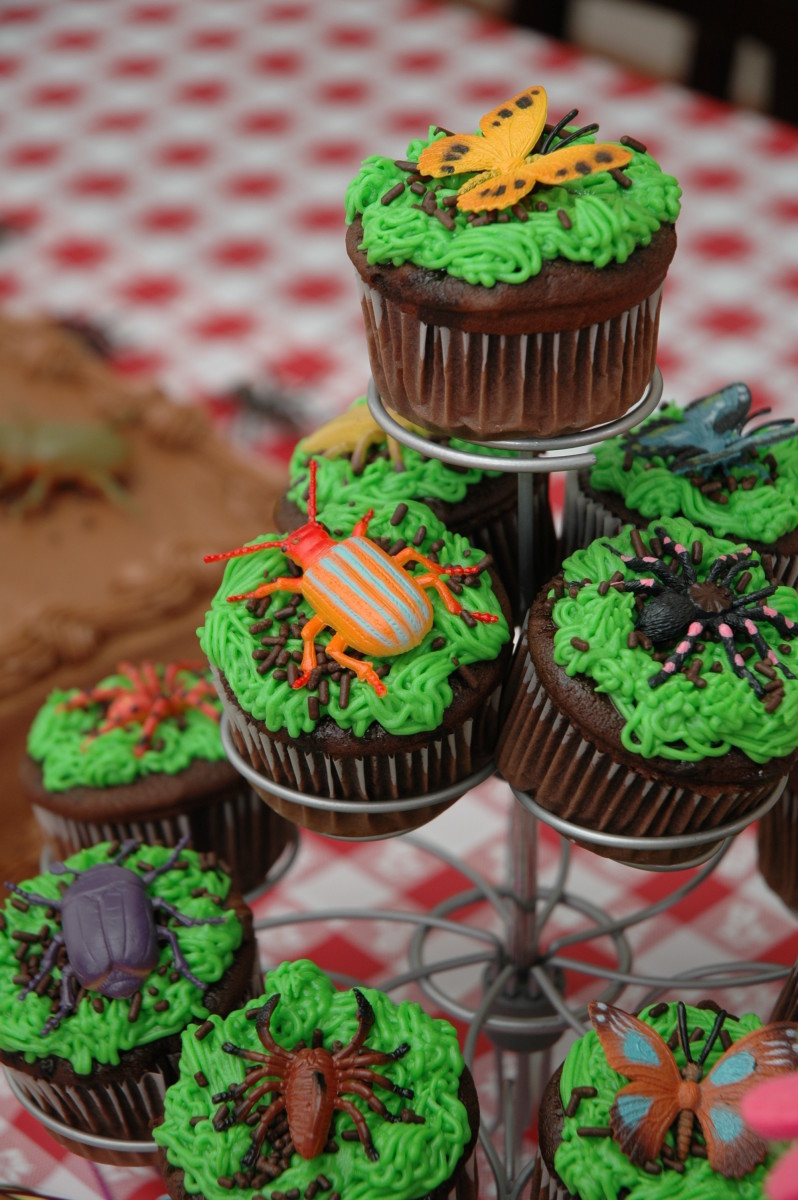 Bug Birthday Party Cupcakes!