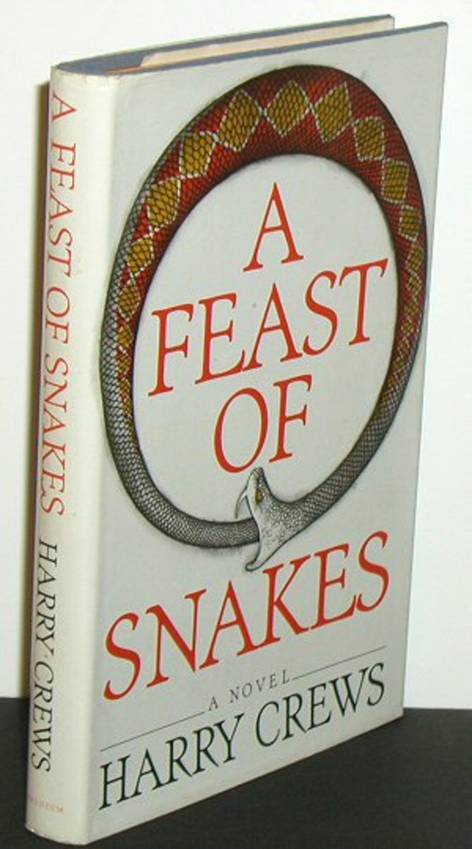 Reader and Character Connections in A Feast of Snakes
