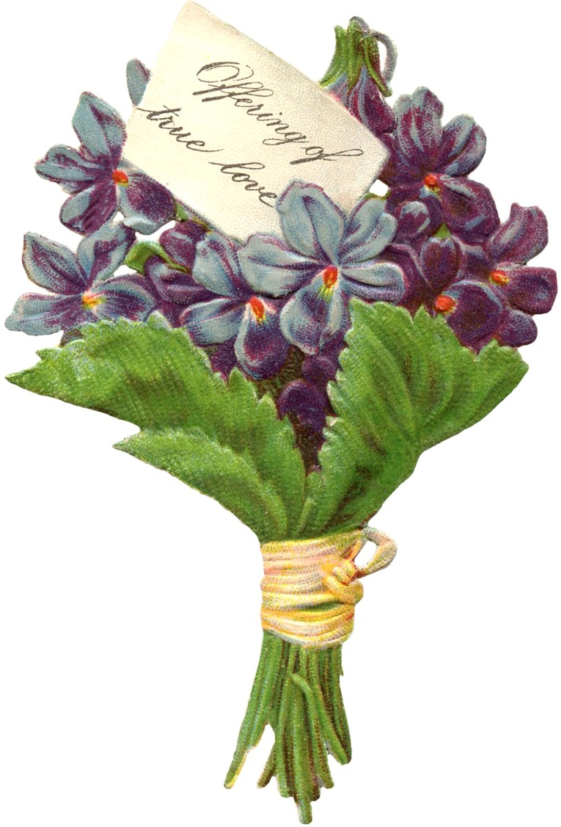 During Victorian times young gentlemen would give their lady-love a small bouquet of sweet scented violets.