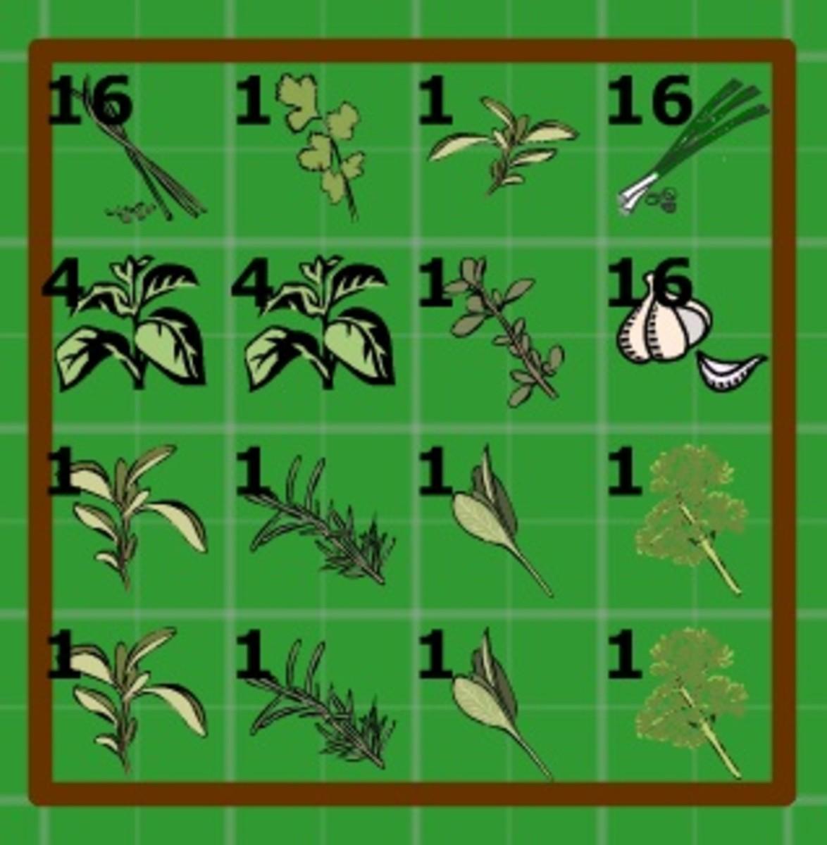 herb garden plan