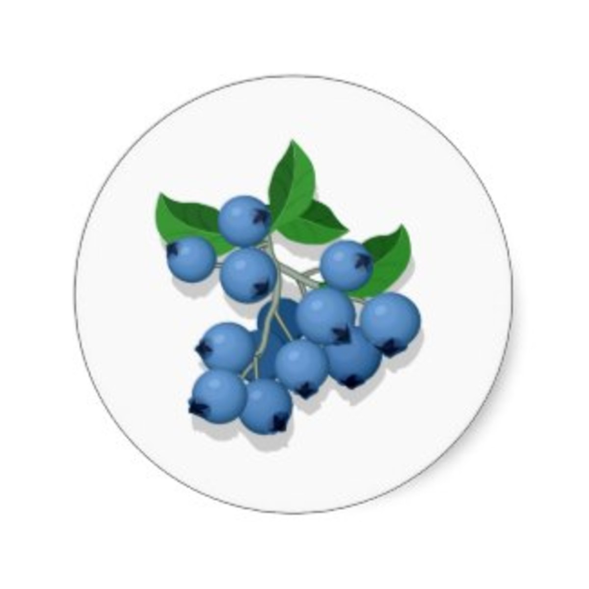 Blueberry Sticker