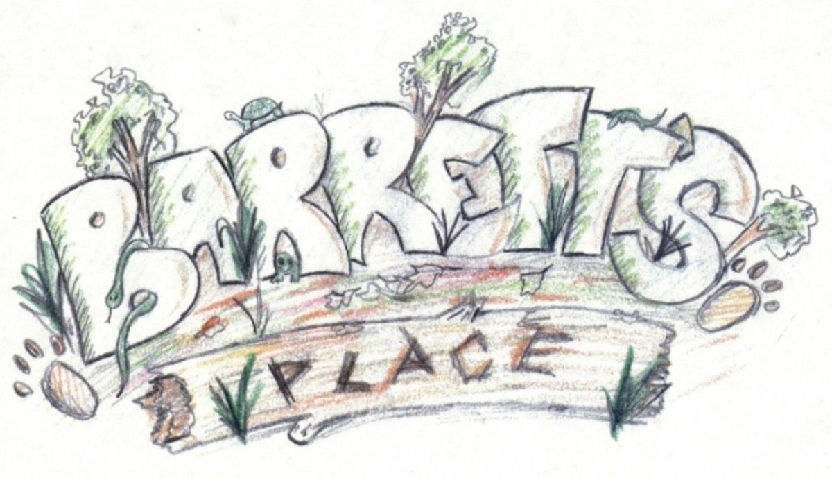 Barrett's Place Playground logo