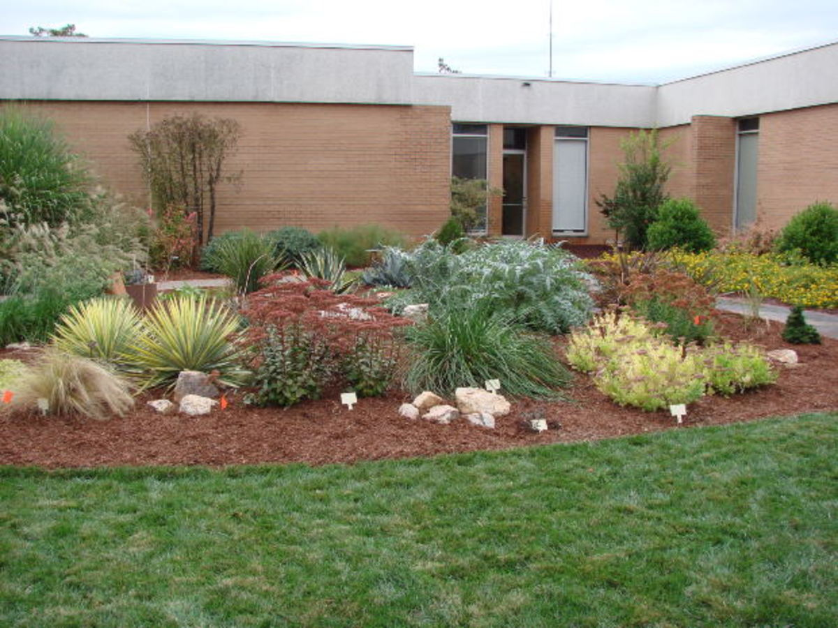 A small landscaped area outside a school could be a memorial garden for a teacher who has died.