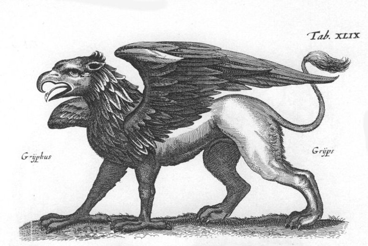 The Gryphon / Griffin.