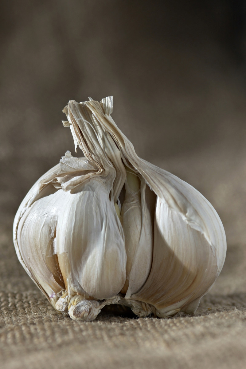 Varieties of Garlic
