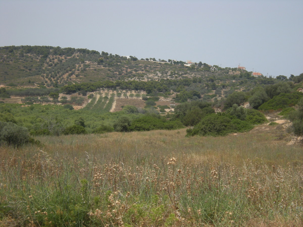 a typical scenery of the Greek valleys