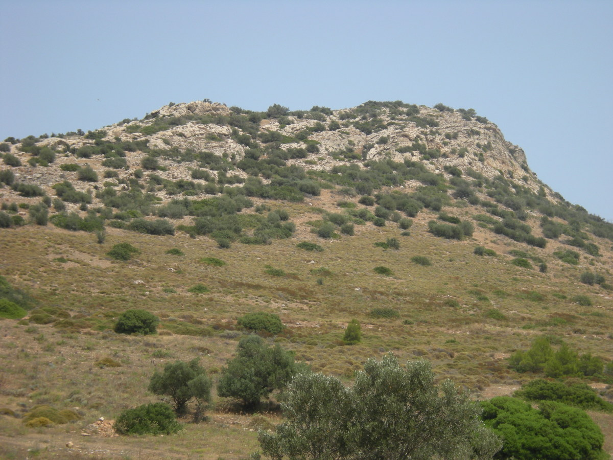 near the sea: hills covered with thyme and rosemary