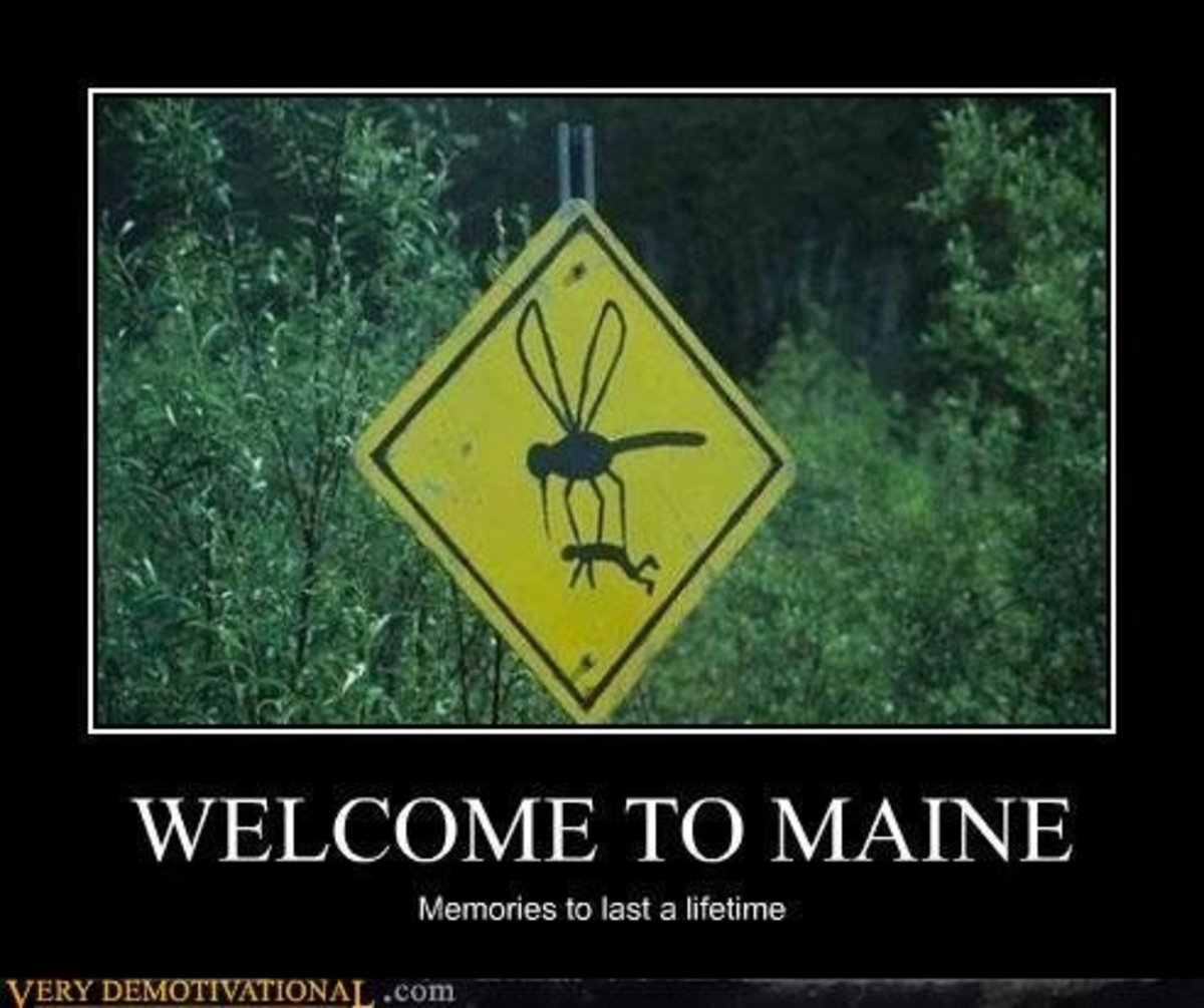 maine, sign, welcome, demotivational, posters, humor, jokes, comedy, funny, lol