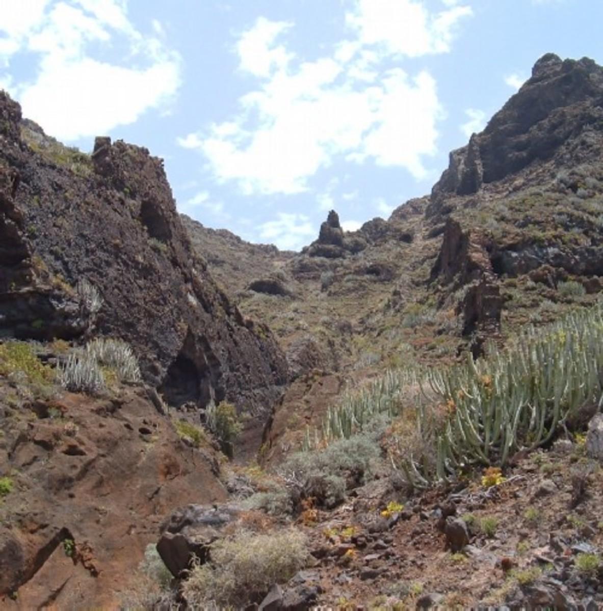 The road from Tenerife's Buenavista to Punta de Teno