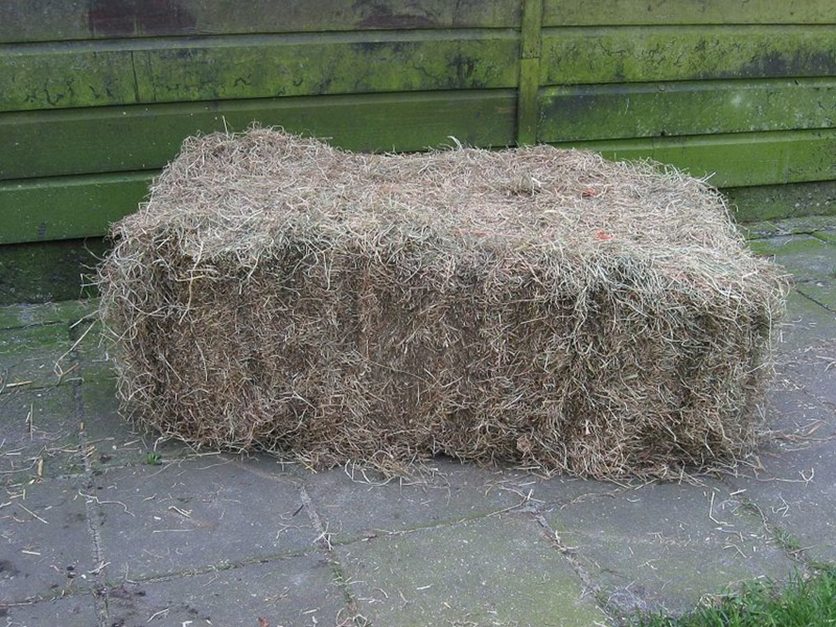 Hay bales just naturally belong on Hee Haw