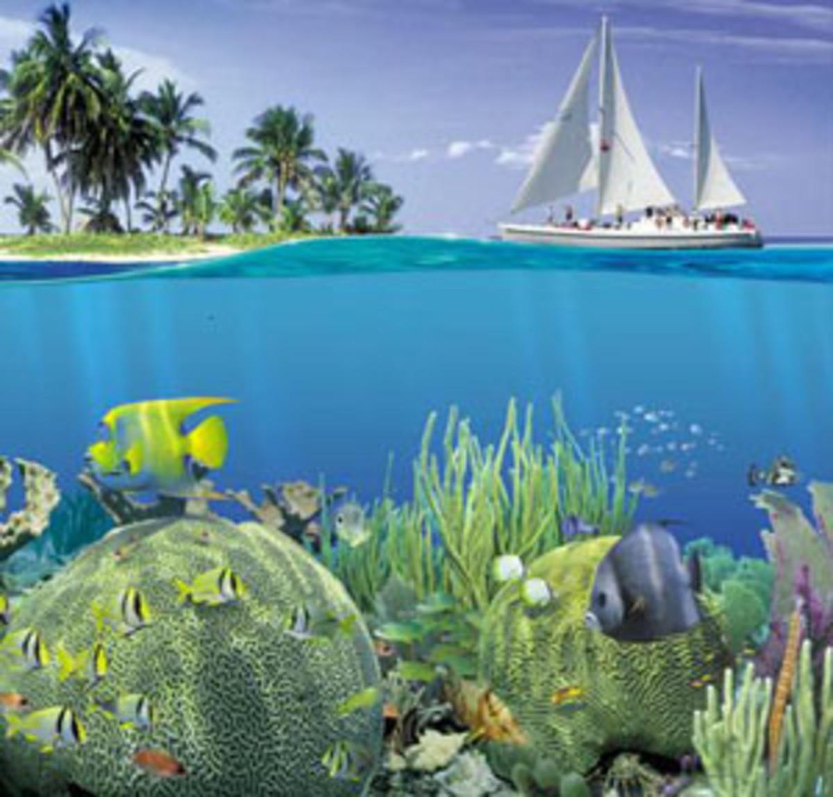 best-snorkeling-spots-in-the-caribbean