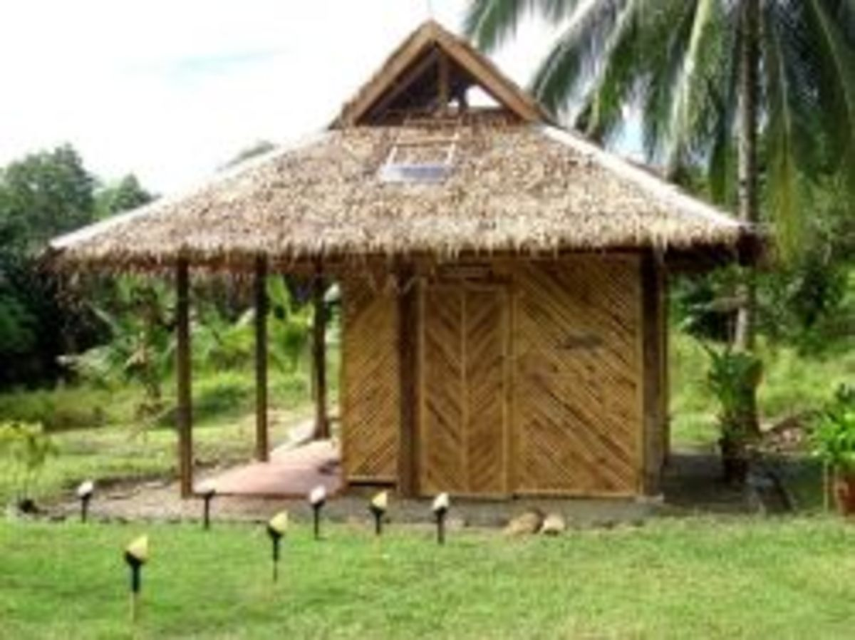 The hut done and the bamboo door closed showing patio from the N E side
