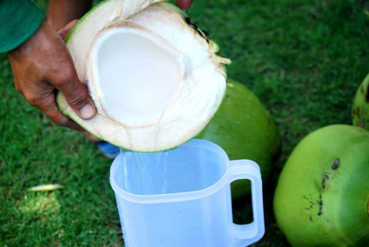 Fresh buko juice off the farm. Very healthy drink, replenishes electrolytes in body!