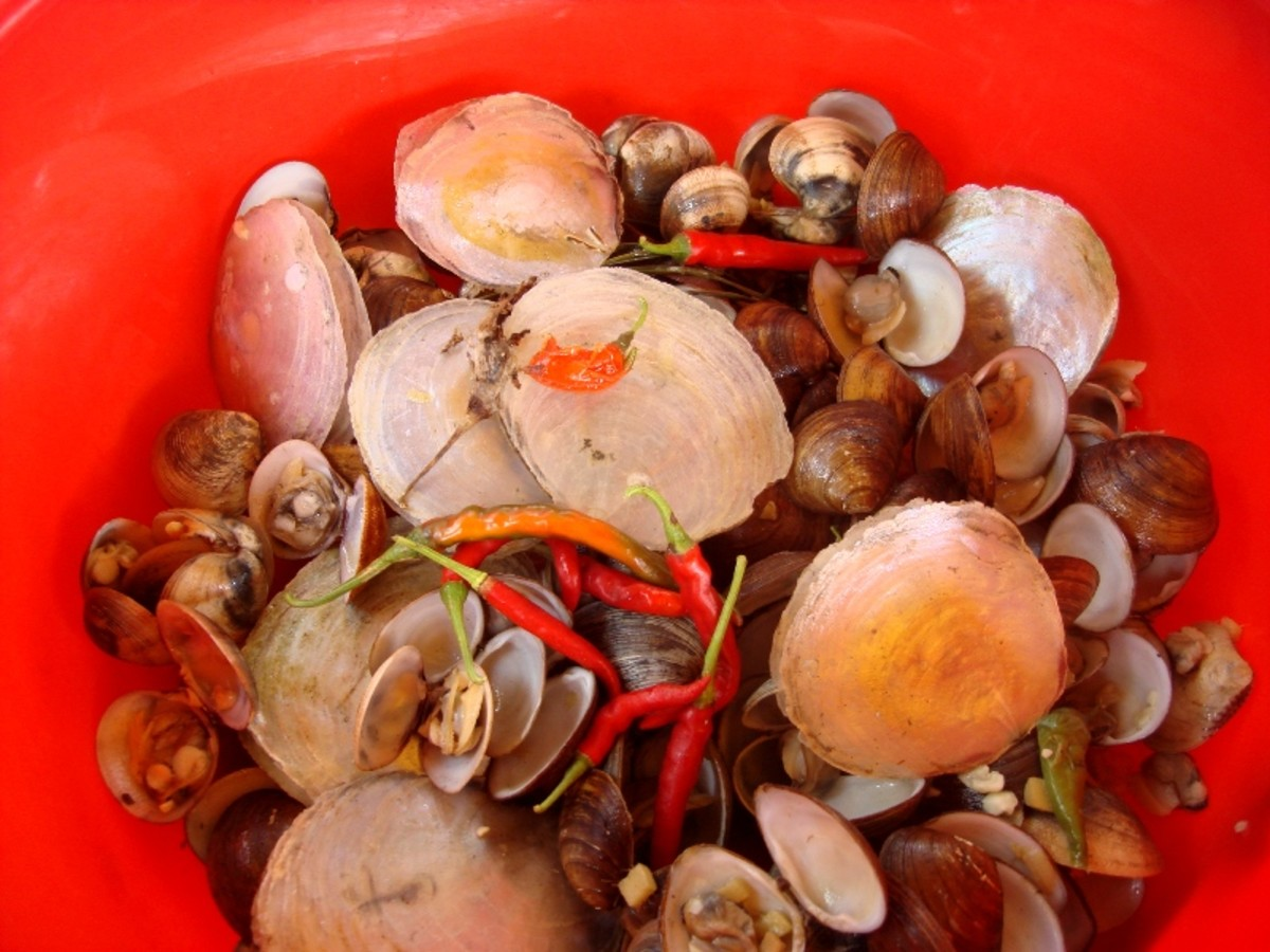 Clams with garlic, onions, giner and chili peppers grown in our garden.