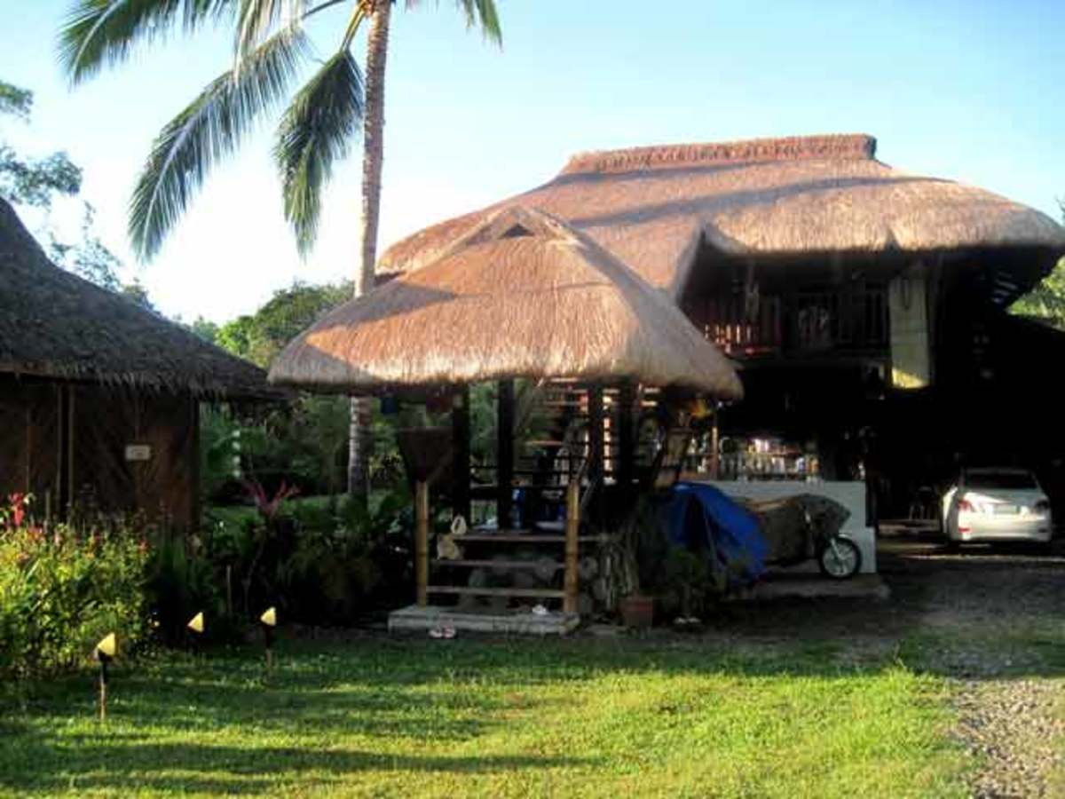 This is the 2nd building we put in made of bamboo and native woods and cogon grass as thatch for the roof.
