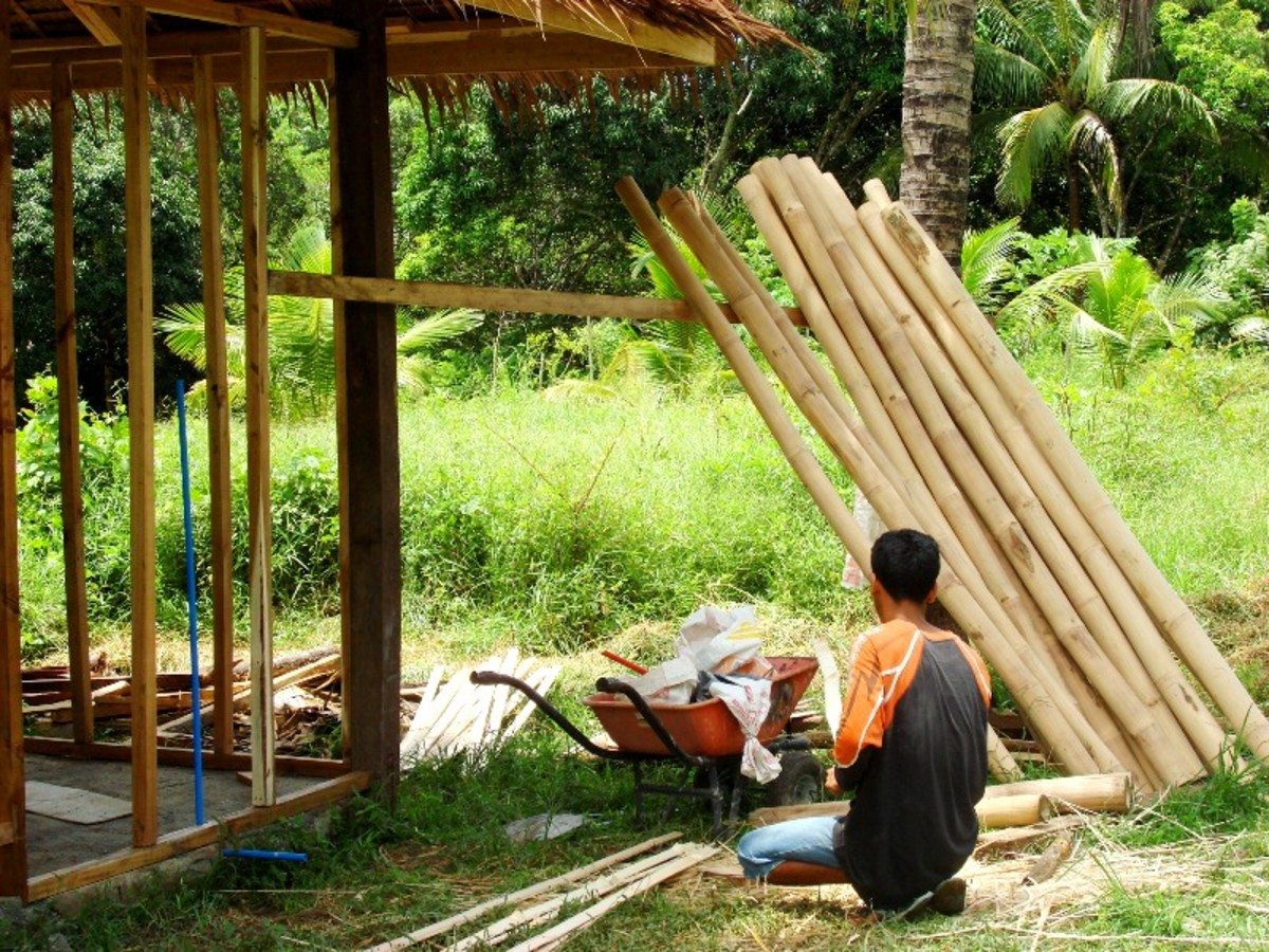 Bamboo poles for siding from our own grove.