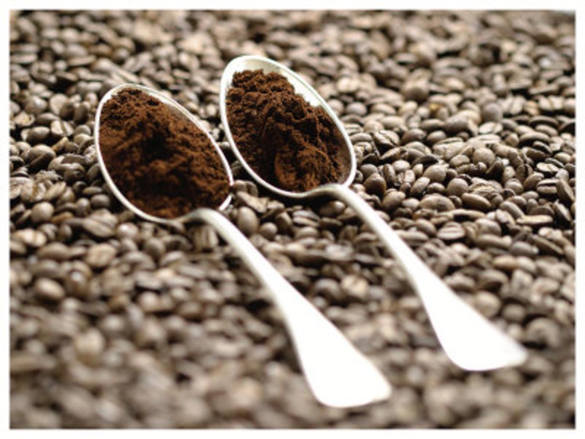 melitta 12 cup coffee maker manual