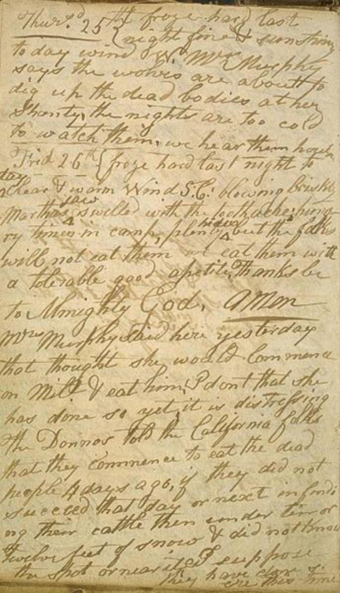 Diary of Patrick Breen