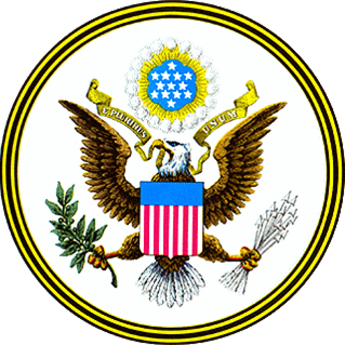 The American government is grounded on the idea of limited government which is characterized by the rule of law, republicanism, and constitutionalism with its principles of separation of powers and checks and balances.