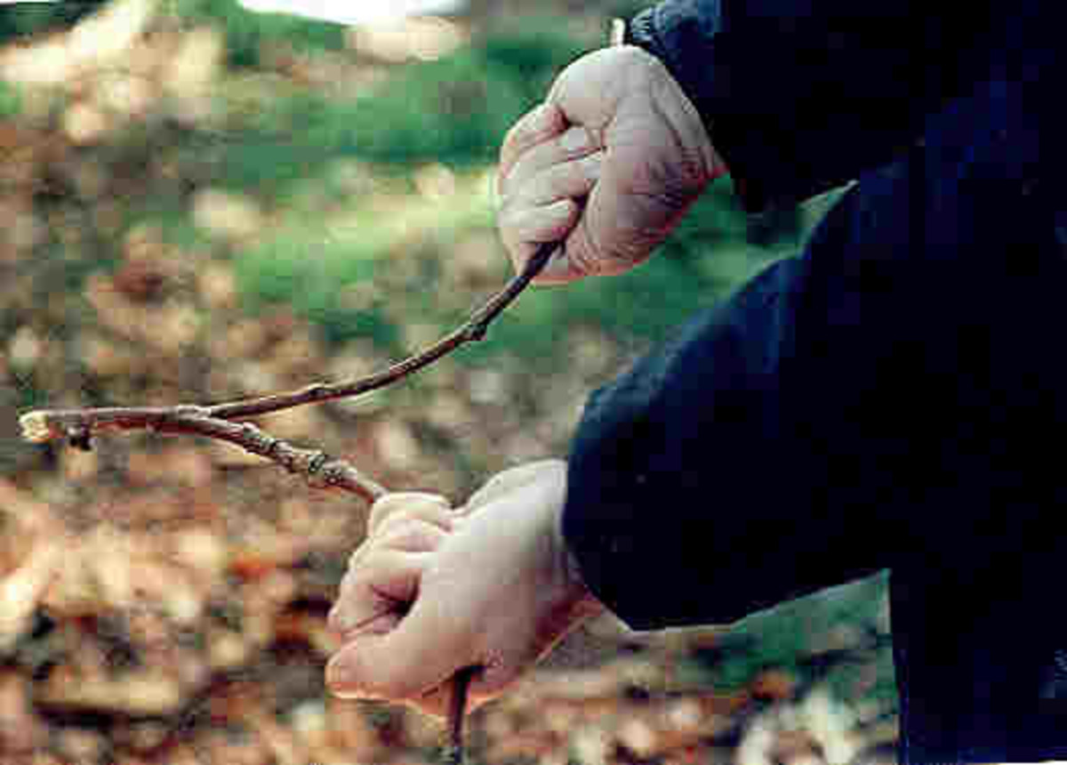 dowsing-the-divining-rod-and-the-paranormal