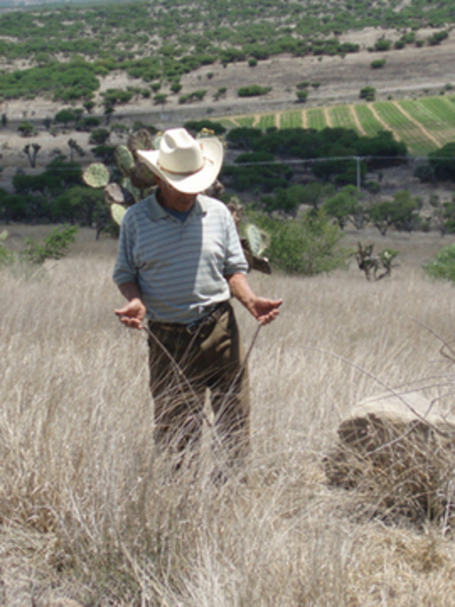 Farmers often pay good money to have more underground water found on their land.