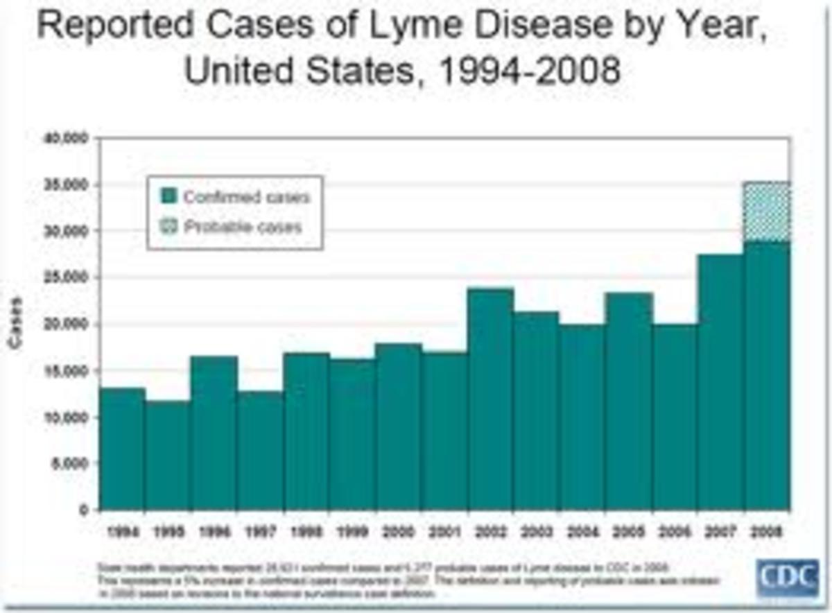 lyme-disease-symptoms-treatment