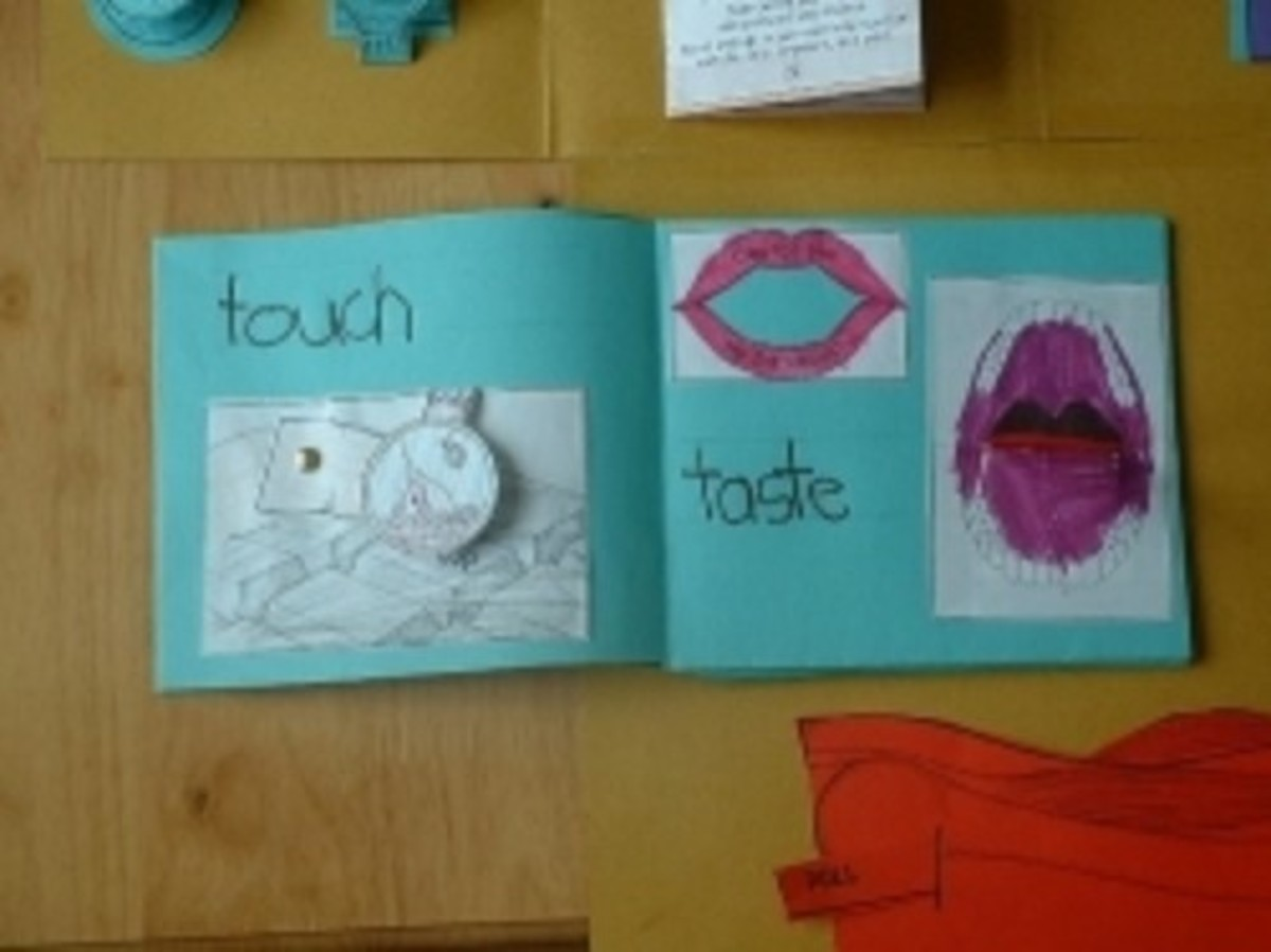 how-to-teach-the-5-senses-to-kids