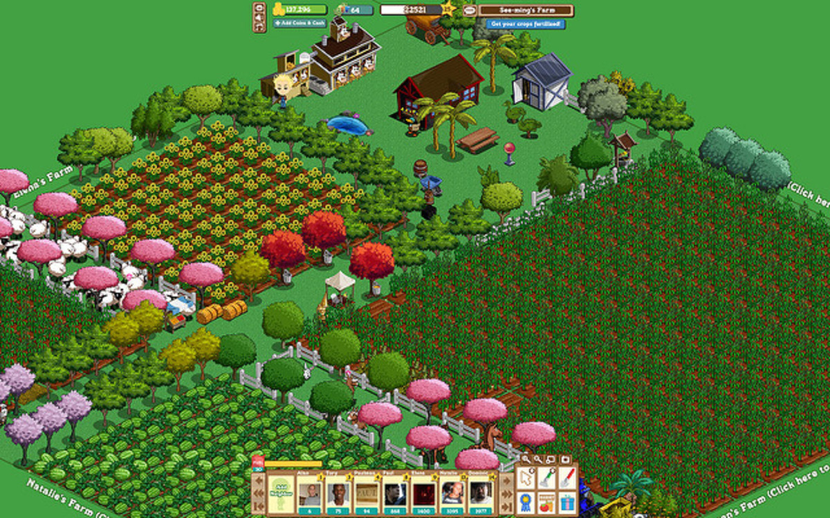 Farmville computer game at level 25.