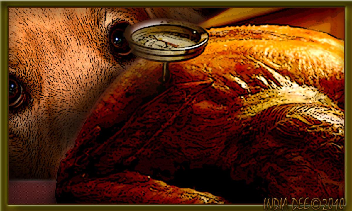 Even Dogs dream about crispy roast turkey skin!