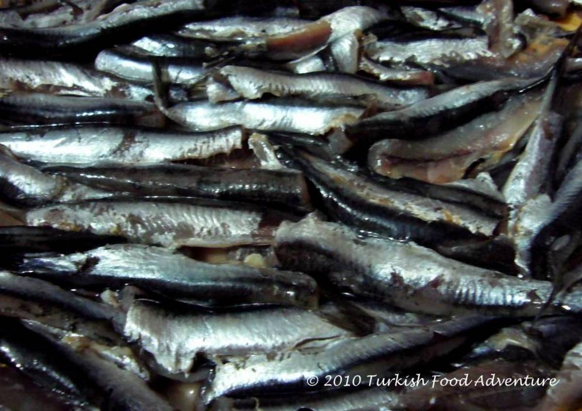 Anchovies from the Black Sea region of Turkey.